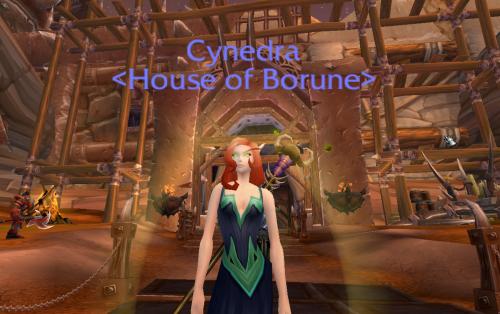 Cynedra_-_spider_web_robe