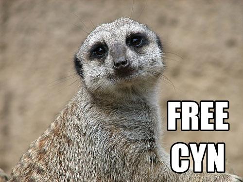 Freecyn
